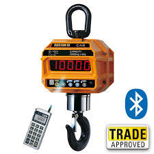 CRANE & HANGING SCALE - Up To 150 tonne